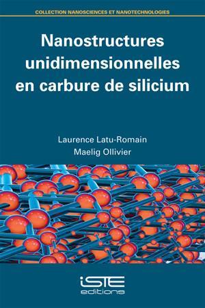 Nanostructures unidimensionnelles en carbure de silicium