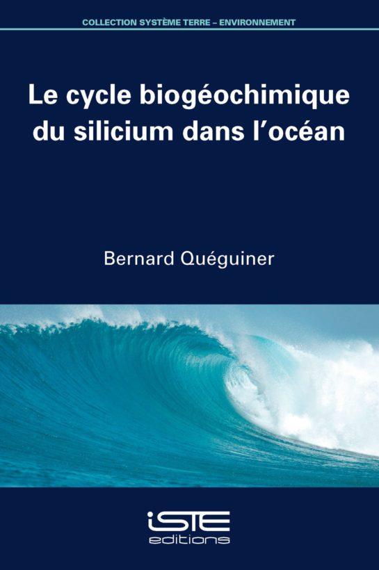 Le cycle biogéochimique du silicium dans l'océan