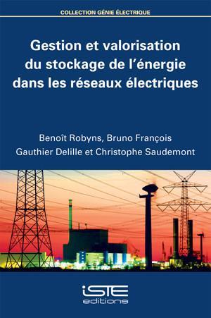 Gestion et valorisation du stockage de l'énergie dans les réseaux électriques