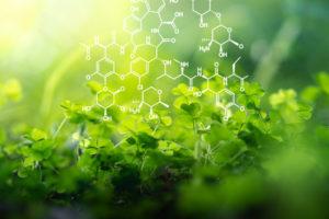 Domaine SCIENCES Biologie - Livres scientifiques et techniques
