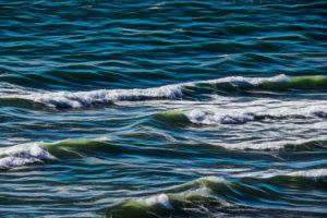 Domaine SCIENCES Océanographie et écologie marine - Livres scientifiques et techniques