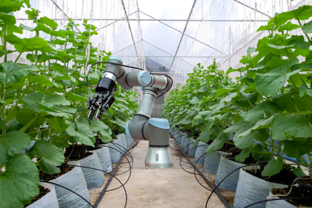 Machine agriculture