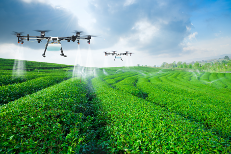 Drone agriculture